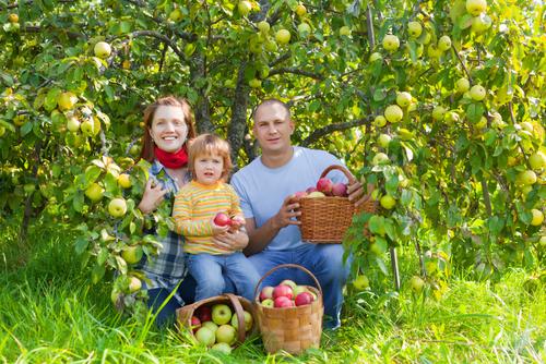 FarmPick-Family